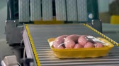 roll on bag : Chicken sausages leave the wrapping line. Stock Footage