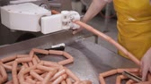 salam : Industrial production of sausages. Food factory equipment.