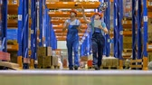 engradado : Two warehouse workers walk between rows with cargo. Vídeos