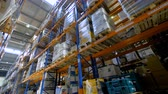 высокий : A  low angle view on a high warehouse rack full of boxes. Стоковые видеозаписи