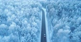 slippery : Aerial shot of a car moving on a forest road in winter. Stock Footage