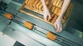 cnc : A top view on workers hands loading baked pastry for packing. Stock Footage