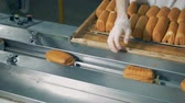 çıktısı : A worker operates a half automatic pastry wrapper. Stok Video
