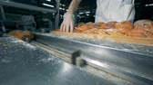 icings : A worker unloads several trays with poppy seed pastry.