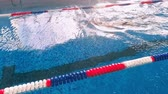 подводный : Aerial shot of a swimmer in a swimming pool. Top view.
