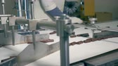 defective : Movement of chocolate candies along the surface of the working belt and its sorting