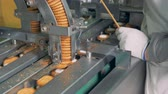 палка : Process of making biscuits by a factory machine. Worker controlls the production process. Стоковые видеозаписи
