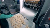 recheado : Meat dumplings are falling from a factory machine onto a tray where a worker is shaking them