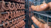 salsicha : Thick and thin sausages along with large sausage sticks are hanging in a storage room
