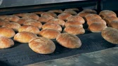 горячая линия : Food processing factory. Ready made bread comes out from oven.