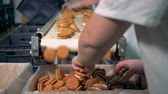 separating : Employees of the factory are sorting ready biscuits and discarding the faulty ones