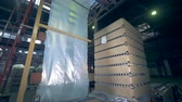 paketleme : A pile of carton boxes with glassy bottles is moving along the transporter Stok Video