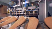 sterility : Ice-cream manufacturing line. Stock Footage