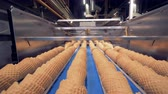 wafers : Automatic process wafer cups, ice cream cones production.