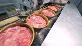 conservado : Canned meat move on a line, close up.