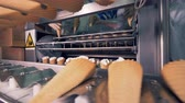 wafers : Process of mechanical relocation of ice-cream cones onto the conveyor belt
