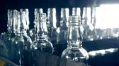 refletindo : Empty glass bottles with ribbed necks are moving in a row along the conveyor belt