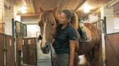 spor kıyafetleri : One woman and a brown horse in a stable, close up. Stok Video