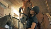 compreensão : Woman talks to her horse, close up. An athlete talks to a horse in a stable before competition.