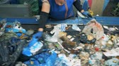 recycling facility : A woman sorts trash on a conveyor, close up. Stock Footage
