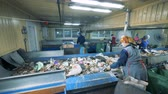 separating : Garbage plant with workers. People work at a plant, sorting litter on conveyors. Stock Footage