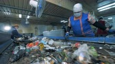 separating : People are sorting garbage which goes on conveyors in a recycling plant.