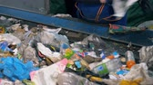 utilization : Factory worker is sorting paper out of the flow of wastes