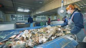 separating : Trash moving along the conveyor belt is getting sorted. Waste recycling plant.