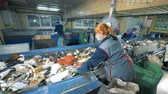 utilization : Plant workers sort garbage for recycling in a waste recycling plant. Stock Footage