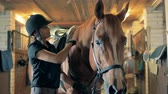juba : A woman brushes horses mane, close up. An athlete prepares her horse for a ride, brushing its mane. Stock Footage