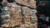 縛ら : Stacks of garbage are tied, close up. Recycling factory stores lots of piles with trash on a junkyard. 動画素材