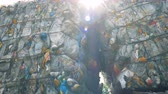 collects : Compressed plastic bottles for recycling. Piles of thrown bottles at a recycling factory.