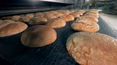 levedura : Many loaves of bread at a bakery, close up. Stock Footage