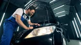 検査官 : Repairing process of an automobile carried out by a technician with a laptop 動画素材