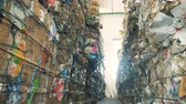 paketlenmiş : Long stacks of trash, close up. Discarded cardboard garbage on a landfill in stacks.