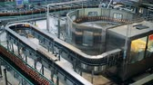 purified : Beer bottles are being transported along automated conveyor belt