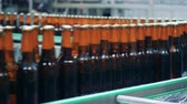 bedrijfspand : Fresh bottles with beer are moving along the industrial transporter
