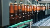 recycling facility : Side view of bottled beer getting transported by the conveyor Stock Footage