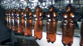 cervejaria : Working machine pours beer into bottles, close up.