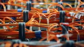 korek : Multicolored wires at a data center. Chaos, mess Wideo