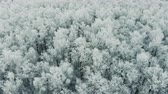 intocada : Switzerland winter landscape aerial shot. 4K. Stock Footage
