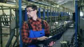 mechanized : Mechanized milking unit with a male specialist operating a laptop Stock Footage