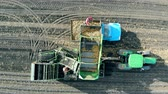 farming equipment : Gathered potatoes are getting displaced from the truck into the container Stock Footage