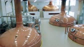 malz : Distillery hall filled with copper brewing reservoirs