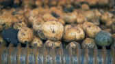 сортировать : A conveyor rotating potatoes in a tractor, close up.