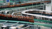 paketlenmiş : Bottles with beer going on a brewery conveyor, close up.