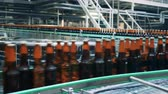 ремень : Full bottles with beer going on a conveyor, close up.
