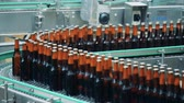 cervejaria : Brown bottles with beer on a brewery conveyor, close up.