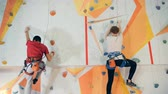 alpinista : People climbing on a training wall, close up. Vídeos