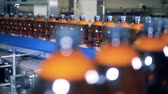 dağıtım : Full beer bottles are moving along the factory transporter Stok Video